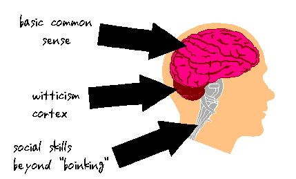 Essential brain components of action hero