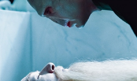 Voldemort and Dumbledore from the Warner Bros. Pictures film Harry Potter and the Deathly Hallows Part 1