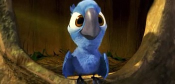 baby blu from the Twentieth Century Fox Animation film Rio