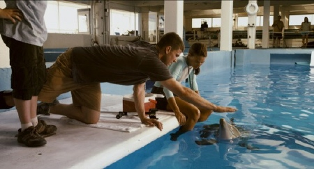 Kyle meets Winter from the Warner Bros. Pictures film Dolphin Tale
