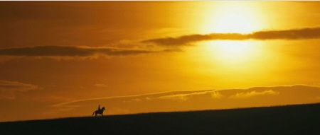 Joey rides off into the sunset from the Dreamworks SKG film War Horse