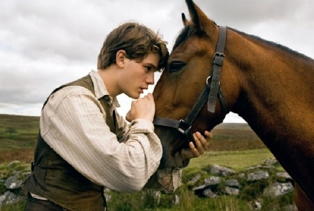 Albert talks to Joey from the Dreamworks SKG film War Horse