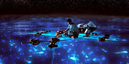Pi and the glowing jellyfish from the Fox 2000 Pictures film Life of Pi