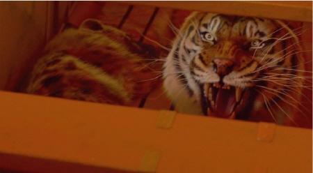 Richard Parker in the lifeboat from the Fox 2000 Pictures film Life of Pi