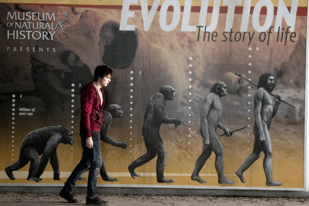 Zombie evolution from the Summit Entertainment film Warm Bodies