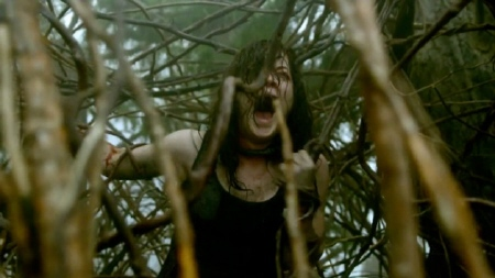 Jane Levy gets raped by vines from the Sony Pictures film Evil Dead 2013