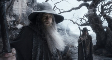 Gandalf and Radagast from the Warner Bros. Pictures film The Hobbit Desolation of Smaug